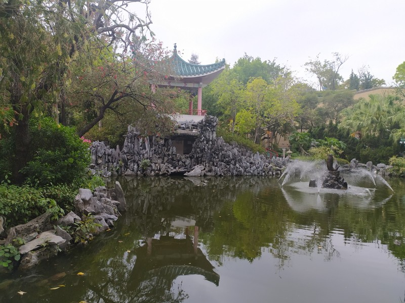 Reflections in a Pond, Chinese Gardens.