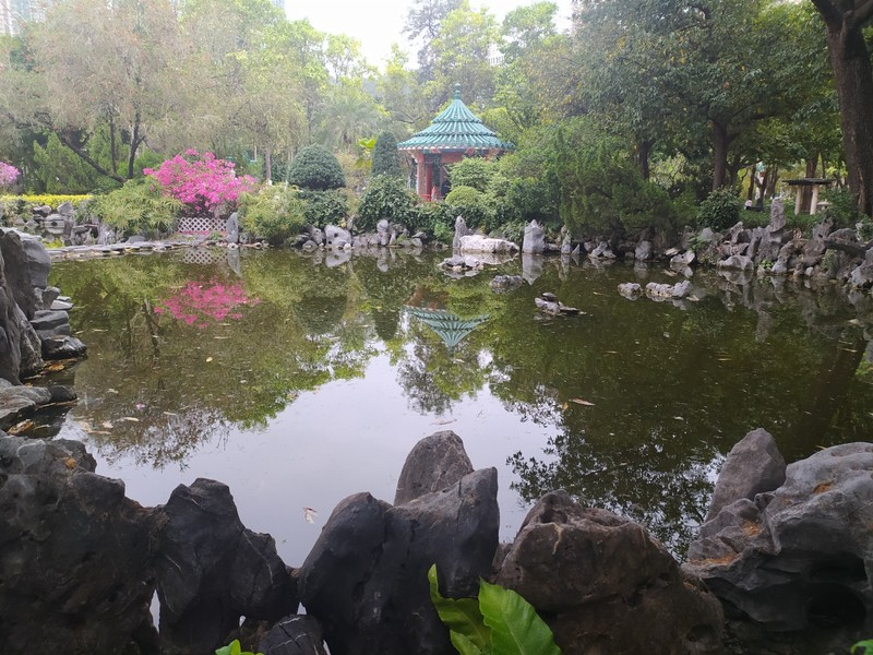 Tranquil Pond, Chinese Gardens.