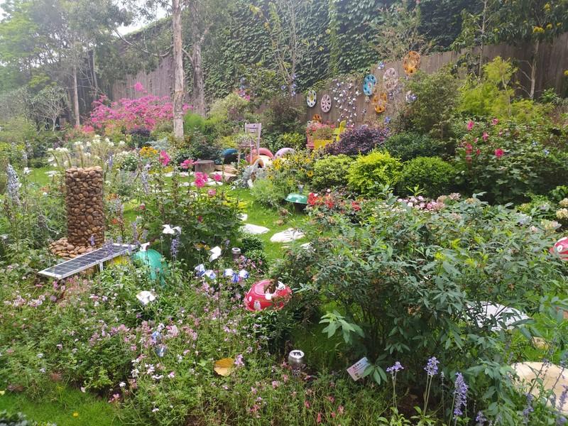 Sham Shui Po Community Garden.