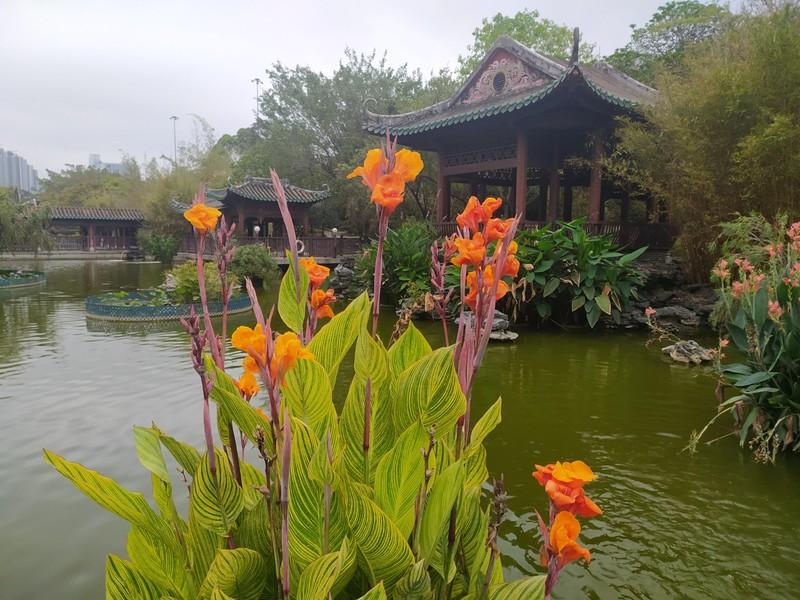 Pagodas Flowers, Ponds.