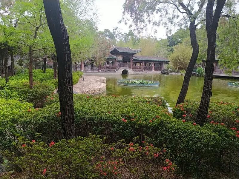 Pond in Lingnan Garden.