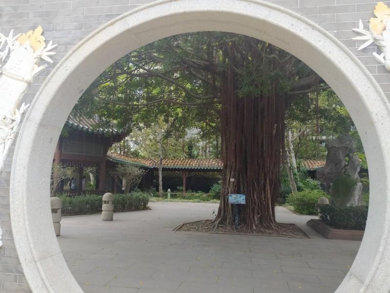Through the Circular Doorway.