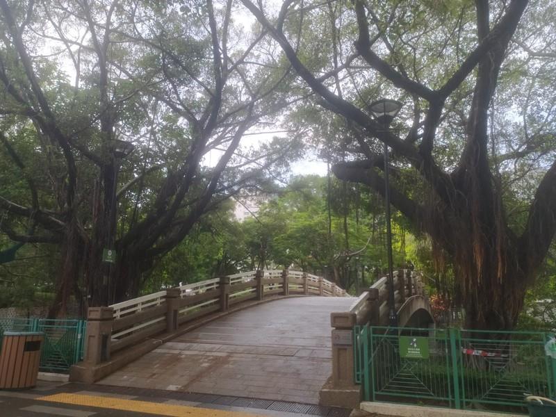 Bridge over the lake.