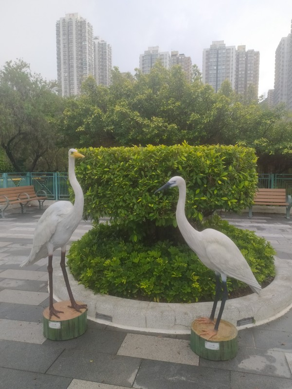 There are many real birds in the park and models to inform you what you might see.