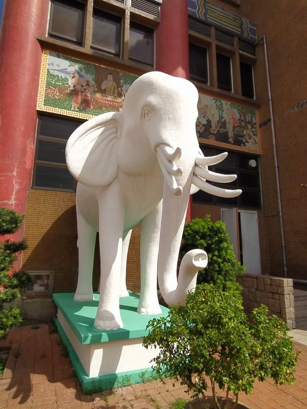 Elephant Guard.