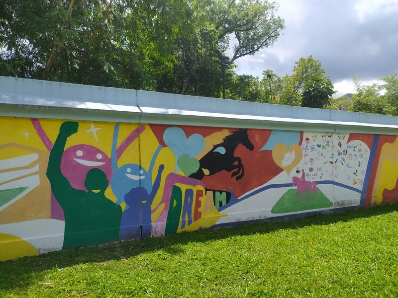 Murals on the park walls.
