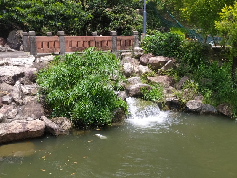 Chinese Garden in North Sha Tin Park.
