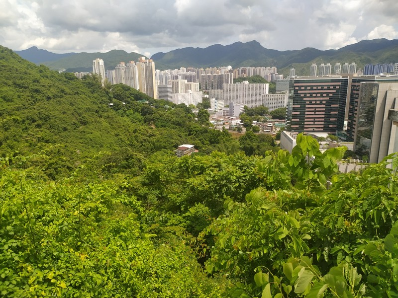 View over Sha Tin from the monastery.