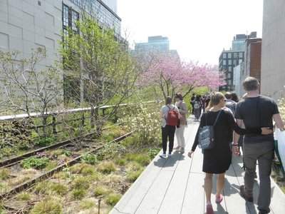 The High Line: side garden