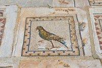 Detail of Roman floor