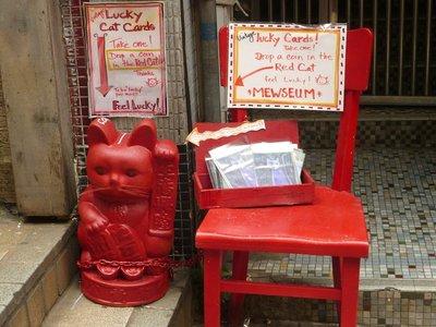 a szerencséthozó piros macska