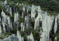 The Pinnacles of Mulu