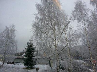 2013-12-19_11_46_58.jpg