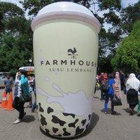 Huge cup of milk