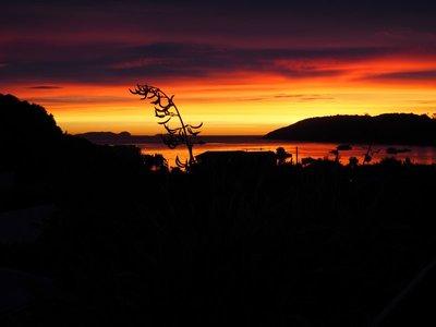 Oban dawn