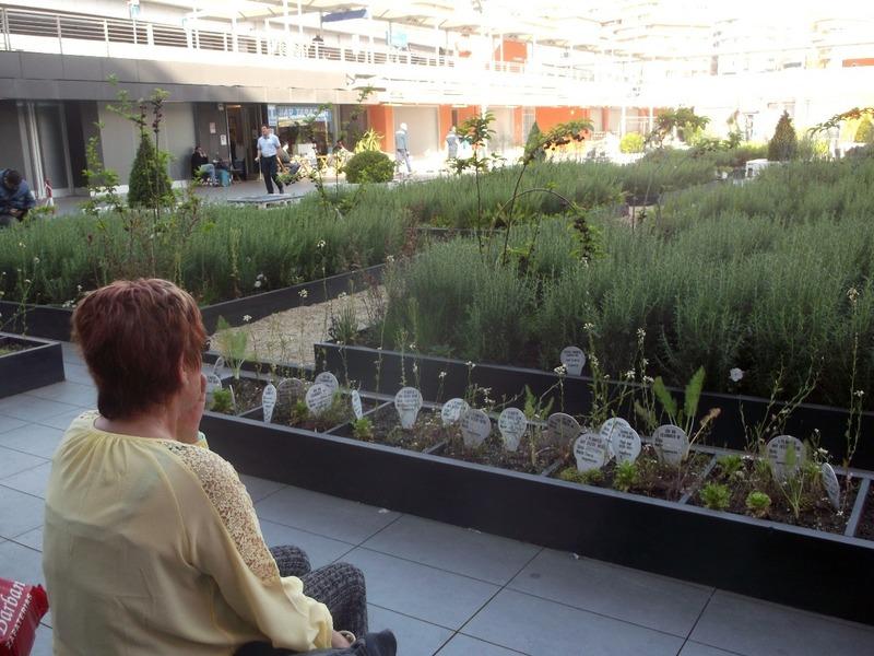 Planted by children at Rome Tibertina Rail Station
