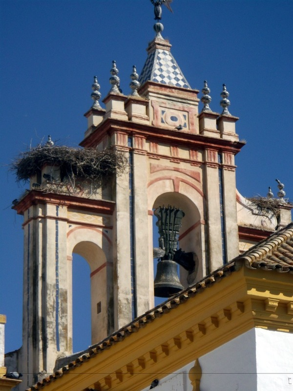 stork nest in bell tower