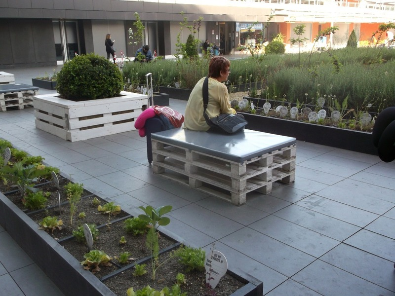 wonderful idea to plant and grow in empty square