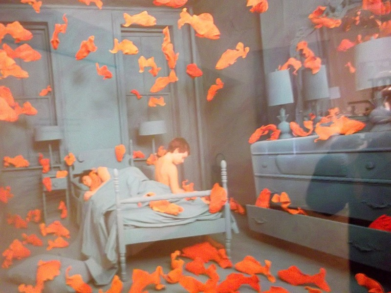The goldfishes revenge..love the title