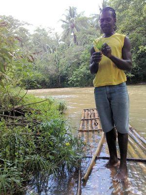 Rafting - Jamaica - Runaway Bay