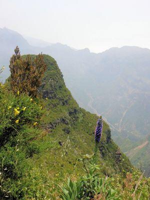 Encumeada - Madeira - Serra de Água