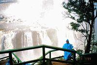 Iguacu - Parque Nacional do Iguaçu