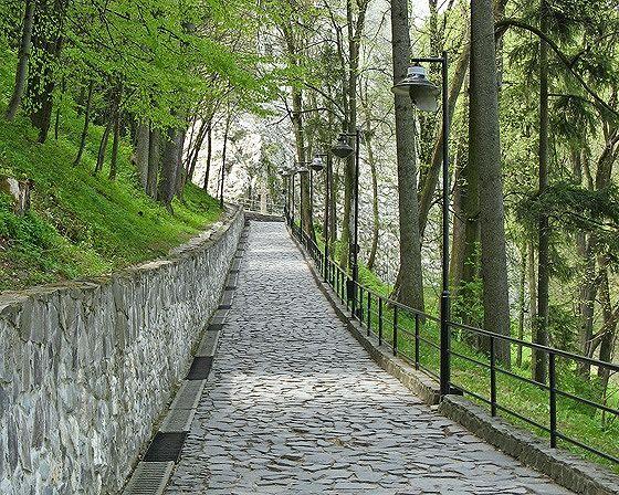 Lane, Bran, Romania 2007 - Bran