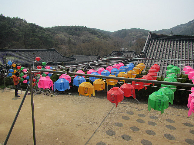 Magok temple with lanterns