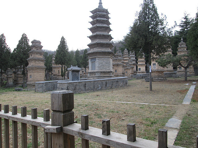 Pagoda forest