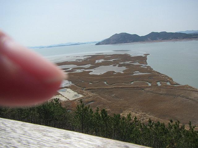 My thumb!?