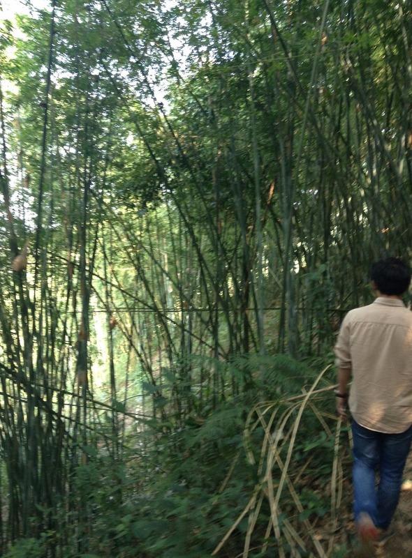 Huangtian hills