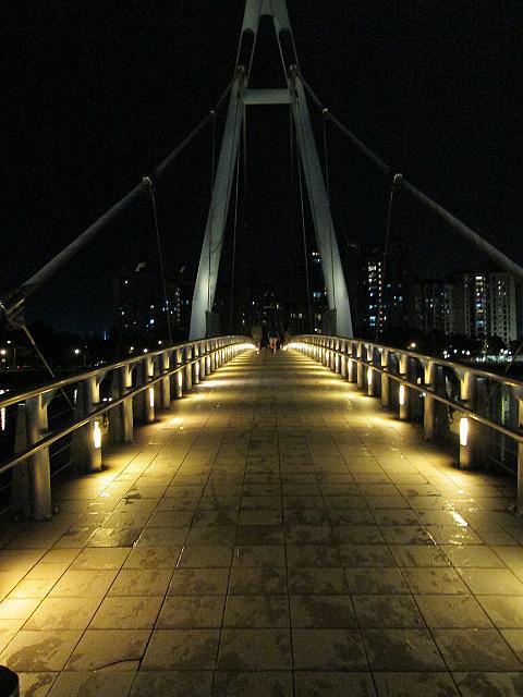 Sports Hub bridge