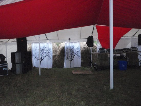 Trees in the dance tent