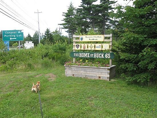 Home of Buck 65