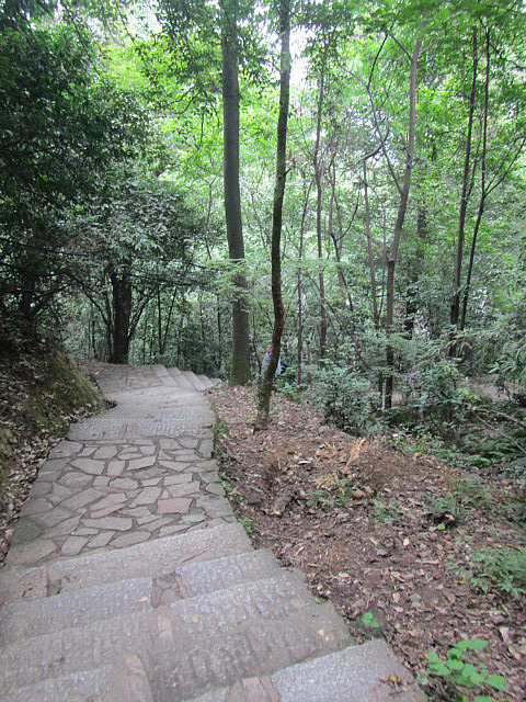Stairs to the top of Yuelu Mountain