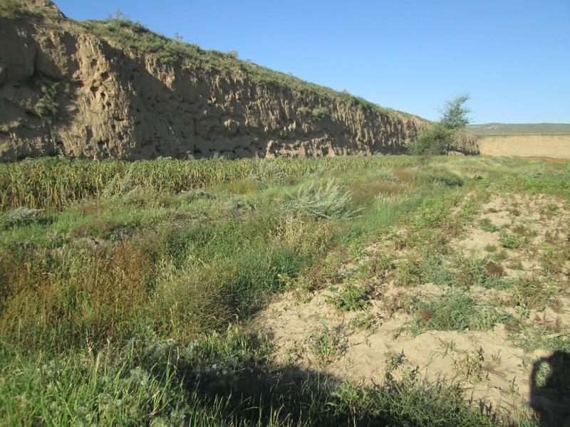 Great Wall in Deshengbao