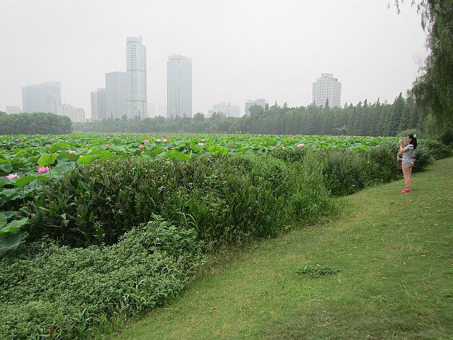 Xuanwu Lake Park
