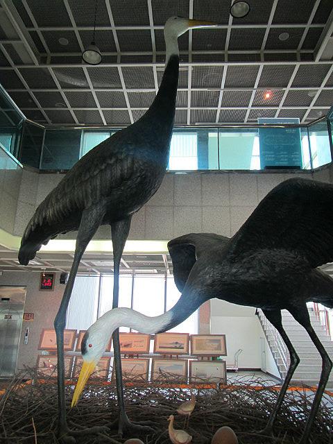 Giant cranes!