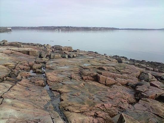 Slippery rocks in Maine
