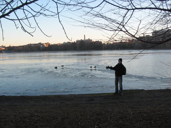 Shaun and Canadian geese