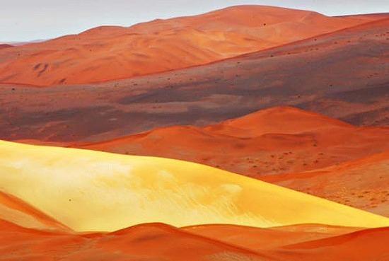 Orange hills