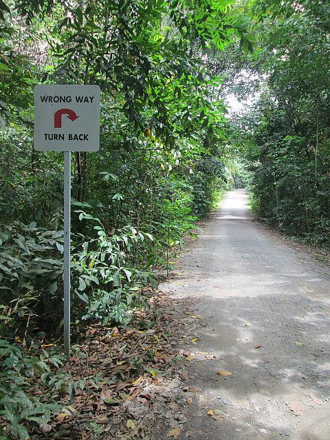 Wrong way???