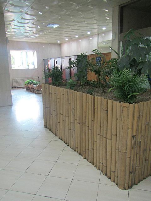 Beautiful train station bathrooms!