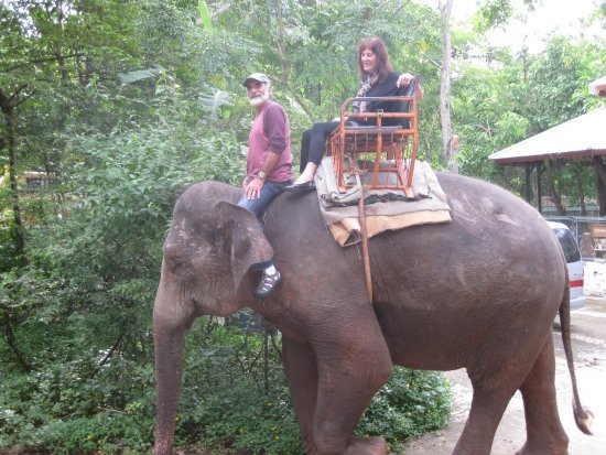 Michael and Barbara on an elephant