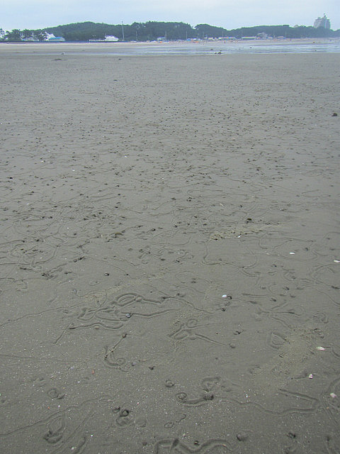 Kkotji beach