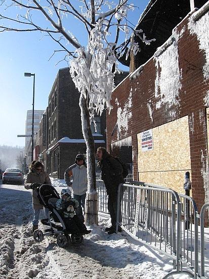 Crazy ice tree