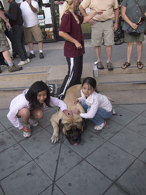 Kids and a big dog
