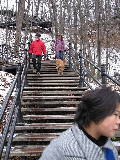 Slippery stairs and Wai-Yin
