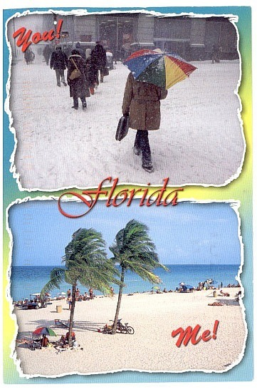Postcard from Martin in Florida