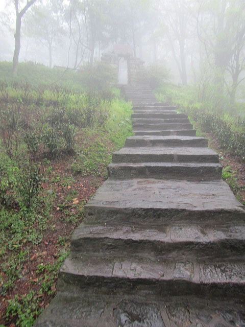"Steps to ""Dragon's Head Cliff"""